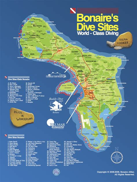 bonaire dive resorts buddy dive resort bonaire reviews specials bluewater