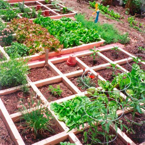Small Veggie Garden Ideas Mountain Gardening Small Space Vegetable Gardening