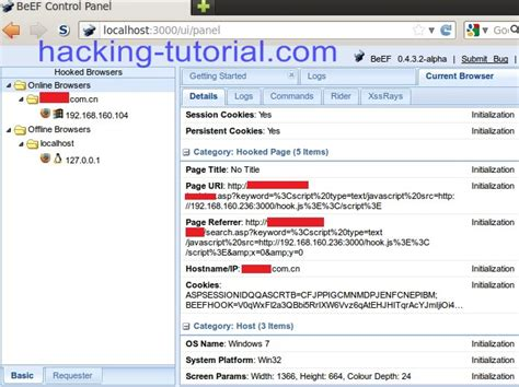 xss exploit tutorial xss attack hacking using beef xss framework ethical