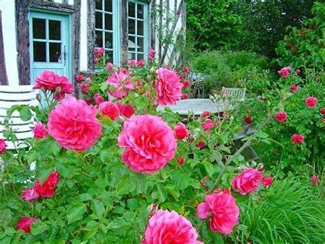 Pinterest Flower Garden Ideas Flower Garden Ideas Pinterest Photograph Flower Garden Des