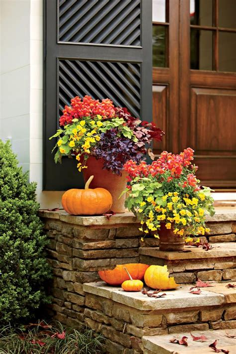 711 Best Fall Is For Planting Your Porch Images On Fall Flower Garden Ideas