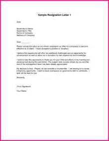 Best Resignation Letter In The World 10 The Resignation Letter Sles