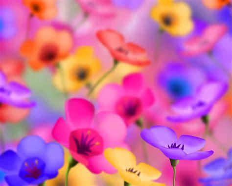 wallpaper flower cute 20 cute flower backgrounds wallpapers freecreatives