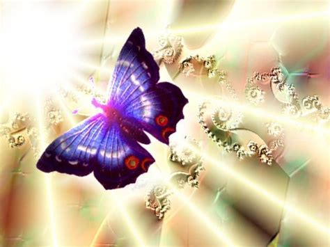 Butterfly Dreams zeliotis butterfly dreams dreams butterfly by b