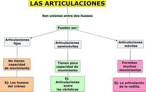 imagenes fijas html las articulaciones las articulaciones