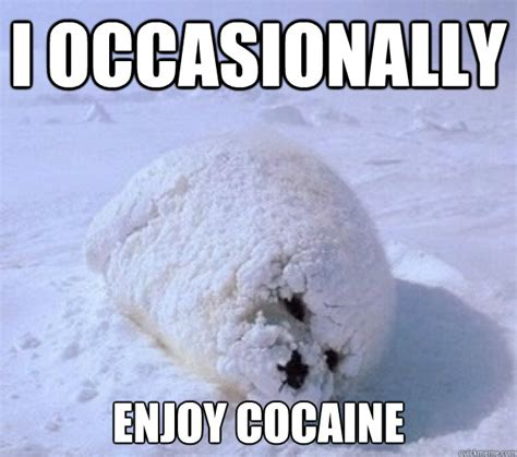 Cocaine Meme - i occasionally enjoy cocaine cocaine seal quickmeme