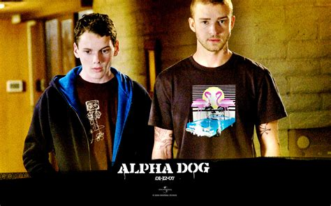 alpha dogs alpha images alpha hd wallpaper and background photos 27276433