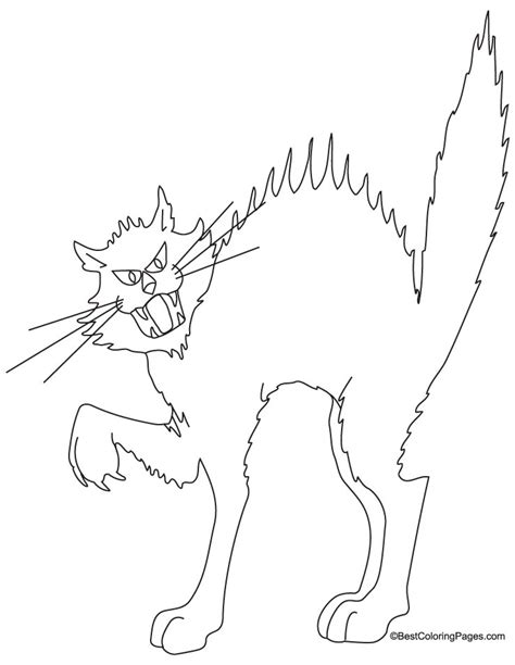 blank cat coloring page black cat colouring pages page 2