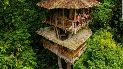 tree houses is the treehouse the pinnacle of sustainable living cnn