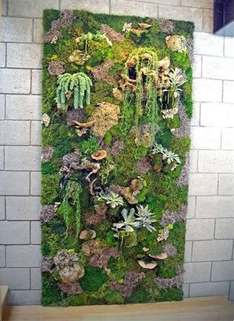 vertical garden with moss plants outdoor