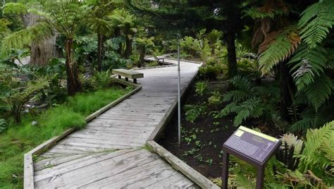 Botanical Gardens In San Francisco Chinatown San Francisco Ca On Tripadvisor Address Phone Number Tickets Tours
