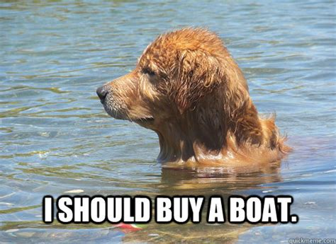 I Should Buy A Boat Meme - i should buy a boat contemplation dog quickmeme