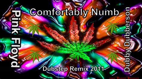 comfortably numb 2011 comfortably numb pink floyd dubstep remix 2011 hq