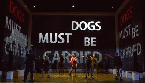 curious incident of the in the nighttime pdf the curious incident of the in the time center theatre