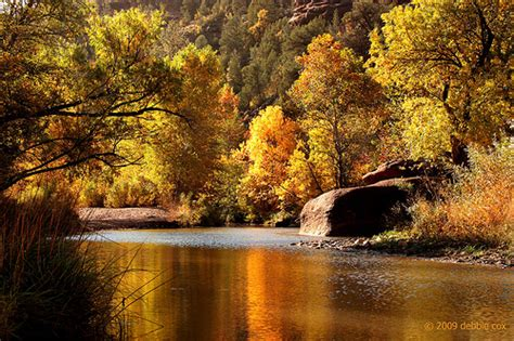 fall colors in arizona photo