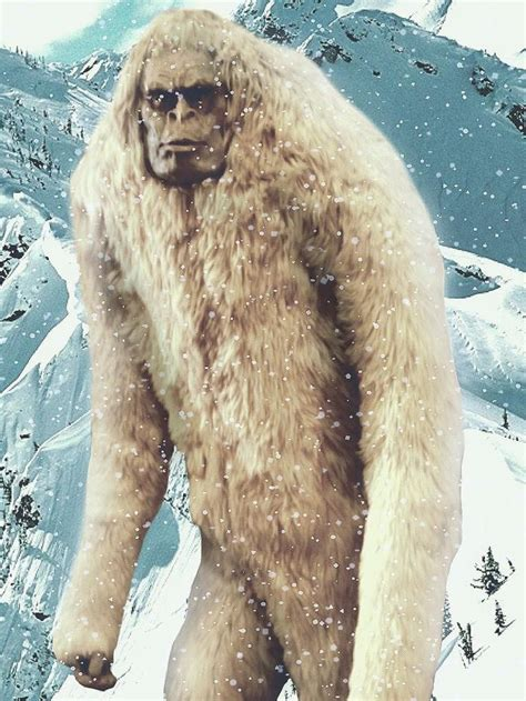 the abominables 26 best images about yeti big foot on cards search and movies