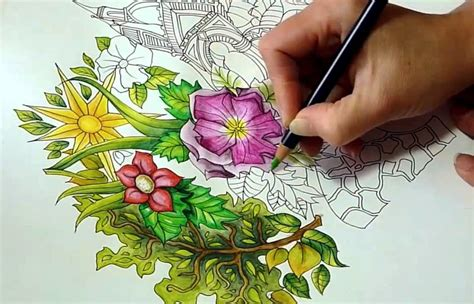 What Are The Best Colored Pencils For Coloring Books