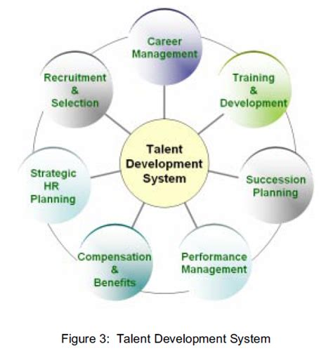 starting a talent development program what works in talent development books talent development the architecture of a talent pipeline