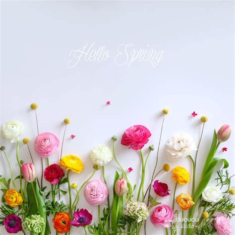 google wallpaper spring google spring wallpaper for desktop modafinilsale