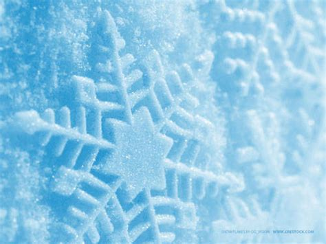 winter fundraising promotions for non profits odds on blog