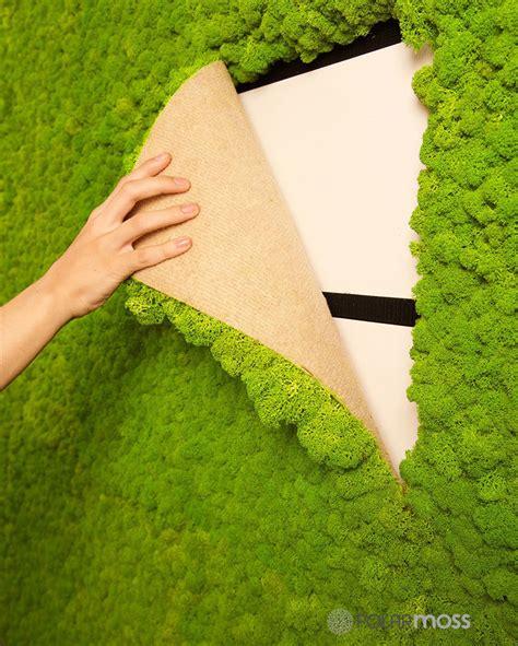 Decorating A Beach House by Diy Moss Ideas 12 Moss Wall Art And Inspiration