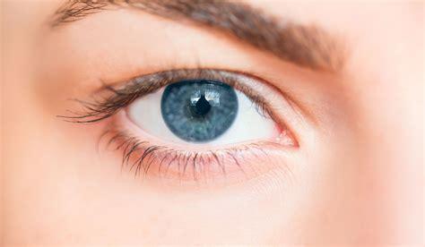 eye sensitivity to light eye light sensitivity driverlayer search engine