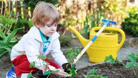 Garten Pflanzen Kinder garten f 252 r kinder