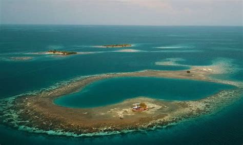 bird island airbnb you can now rent an entire caribbean island on airbnb