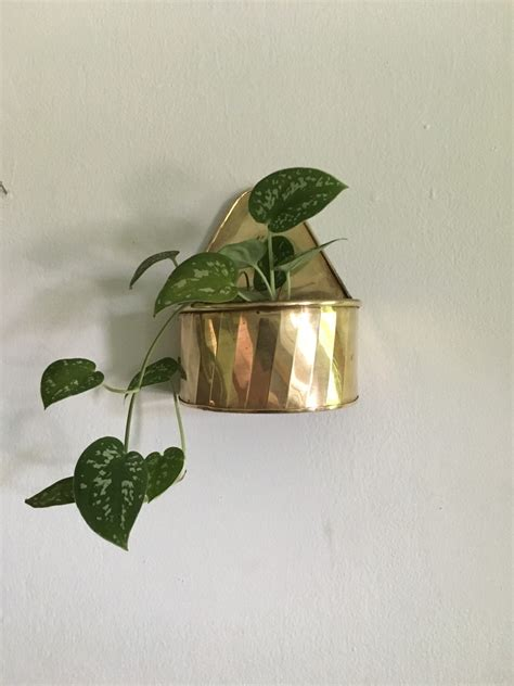 Vintage Wall Planters by Brass Wall Planter Vintage Brass Planter Brass Plant Hanger