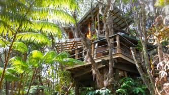 treehouse vacations 5 treehouse vacation rentals abc news