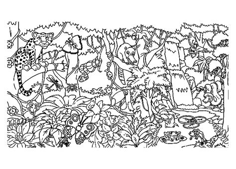 coloring pages animals in the forest forest animals jungle forest coloring pages for