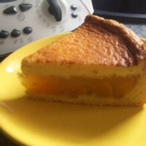 bauchschmerzen nach kuchen saftiger pfirsich pudding kuchen nach landfrauenart