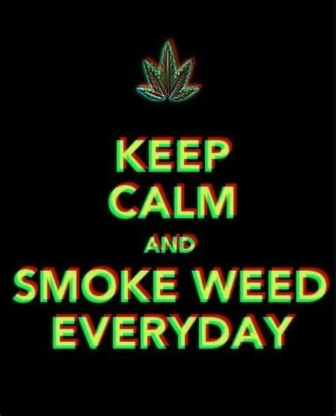 Smoke Weed Everyday Meme - image 288787 smoke weed everyday know your meme