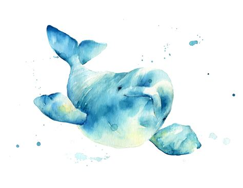 beluga whale watercolor print whale art whale bay shower