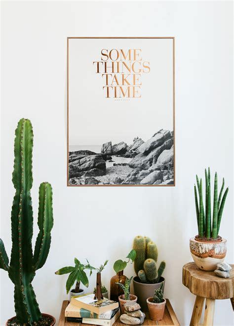Große Zimmerpflanzen Wenig Licht by Sch 246 Ne Zimmerpflanzen So Dekorieren Sie Ihr Zuhause Mit