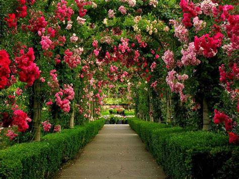 beautiful gardens 10 world s most beautiful gardens pollennation