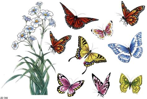 tattoo flash butterfly wp images flower drawings post 5