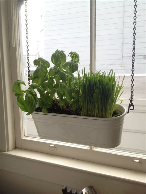 hanging window herb garden pin by j j on window wear pinterest