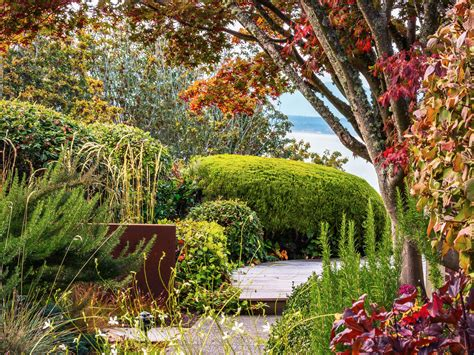 amazing color for the fall landscape landscaping ideas fall planting guide sunset com