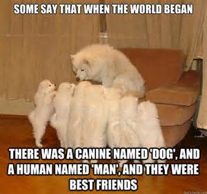Mere Cat Meme - meme watch storytelling dog is a raconteur among mere dogs