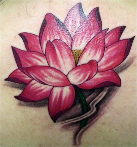 tattoo lotus flower pictures gallery trend tattoo styles lotus tattoo suit for men and women