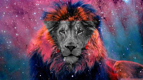 wallpaper tumblr lion vintage animals tumblr pesquisa google cool