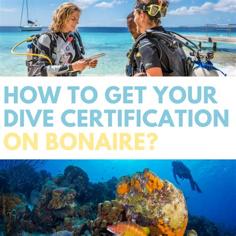 dive certifications how to get your dive certification on bonaire scuba