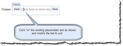 placeholder text color modify content placeholder text
