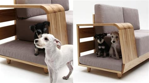 dog couch r modern cushioned sofa with dog house attached