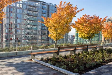 vancouver public librarys redesigned rooftop garden