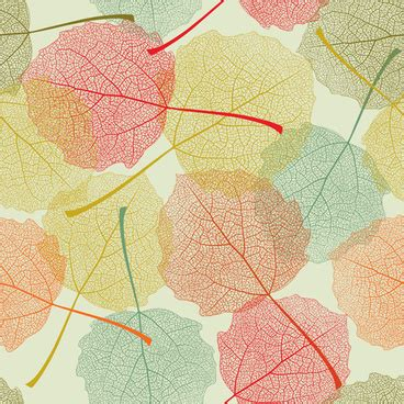 leaf pattern cdr autumn leaves graphics free vector download 3 553 files
