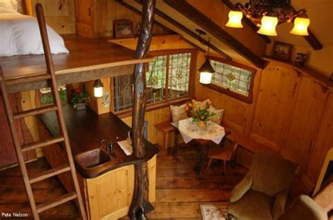 tree house interior treehouse masters treehouses that are world renowned family focus blog