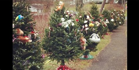 26 christmas trees sandy hook 1000 images about hook on gun rights conservative republican and spotlight