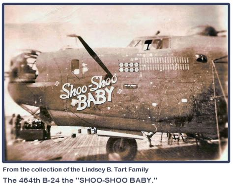 Shoo All In the 464th bombardment in wwii nose photo gallery page 2